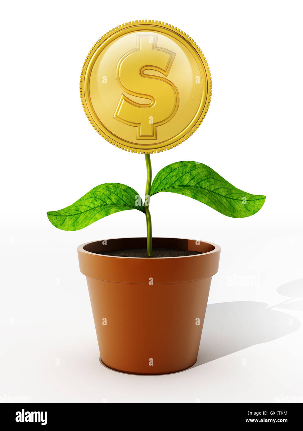Gold coin with dollar sign on the flower pot. 3D illustration. - Stock Image
