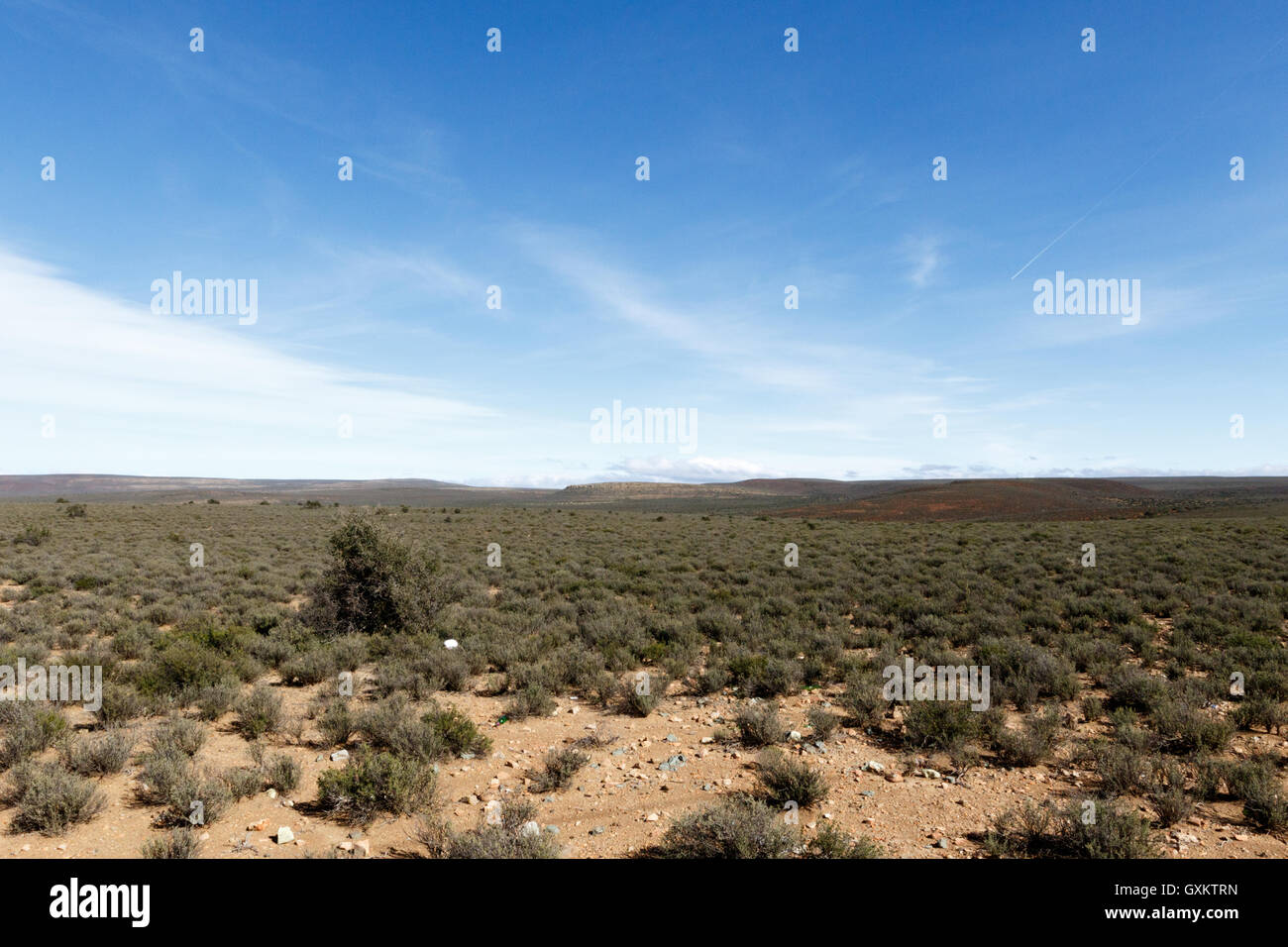 Green and Cold - Sutherland is a town with about 2,841 inhabitants in the Northern Cape province of South Africa. - Stock Image