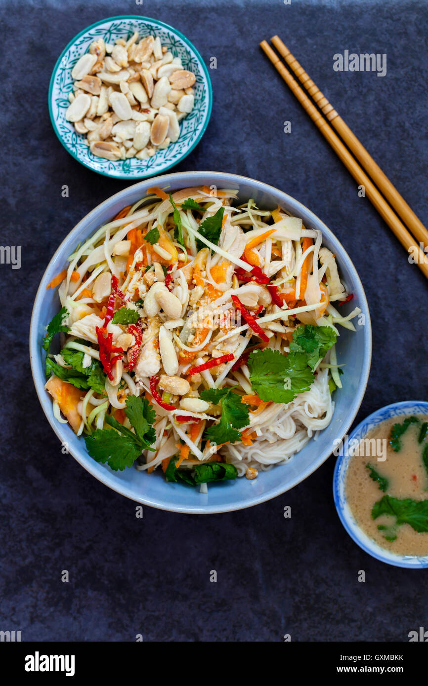 Poached chicken, cabbage and papaya salad with rice noodles and coriander - Stock Image