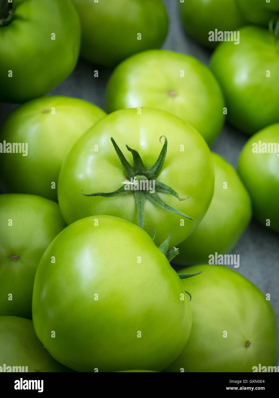 Green tomatoes for sale at the City Market (104 Street Market) in Edmonton, Alberta, Canada. - Stock Image