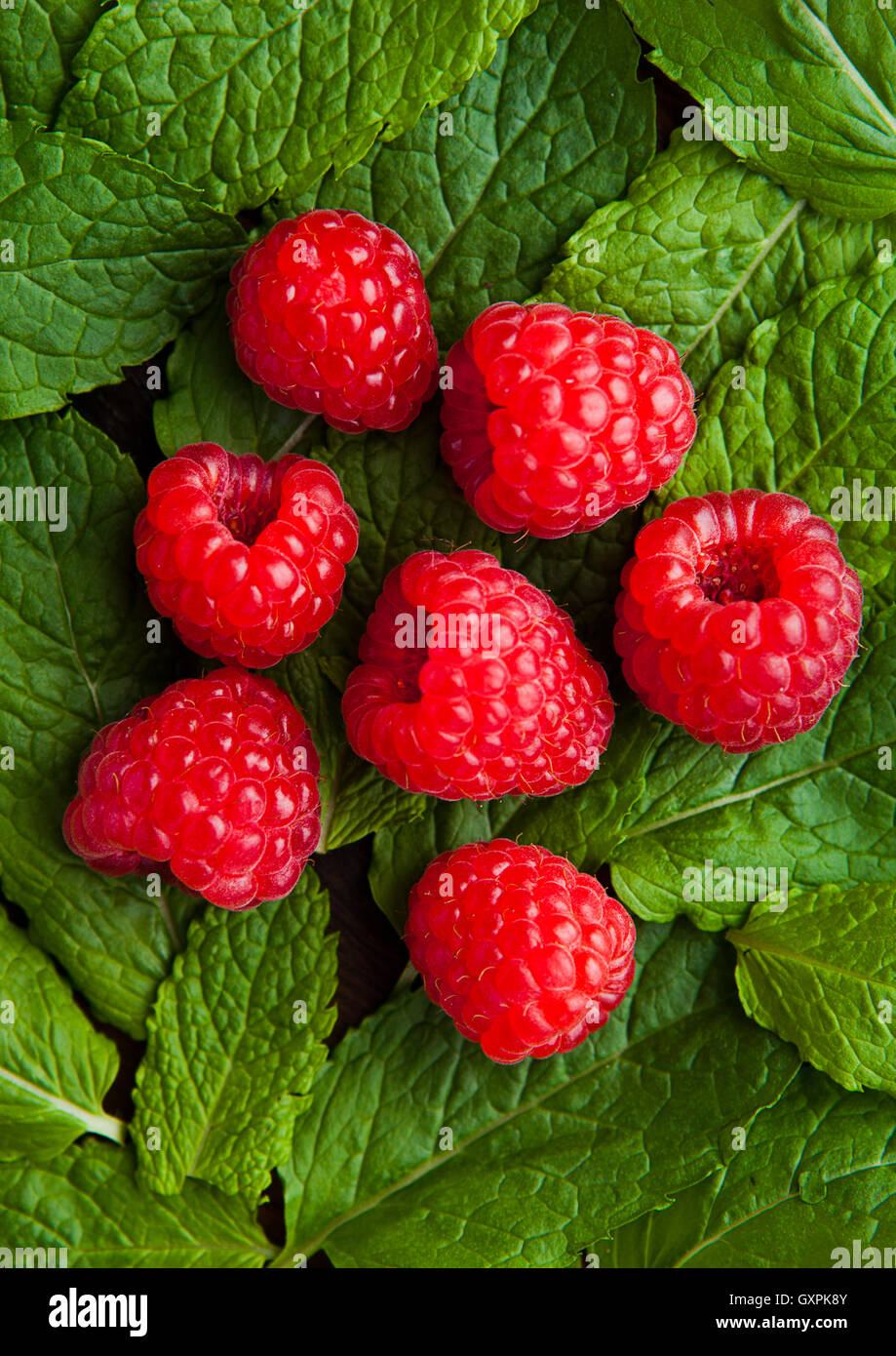 Raspberries on mint leaves clos up. Natural healthy food. Still life photography - Stock Image