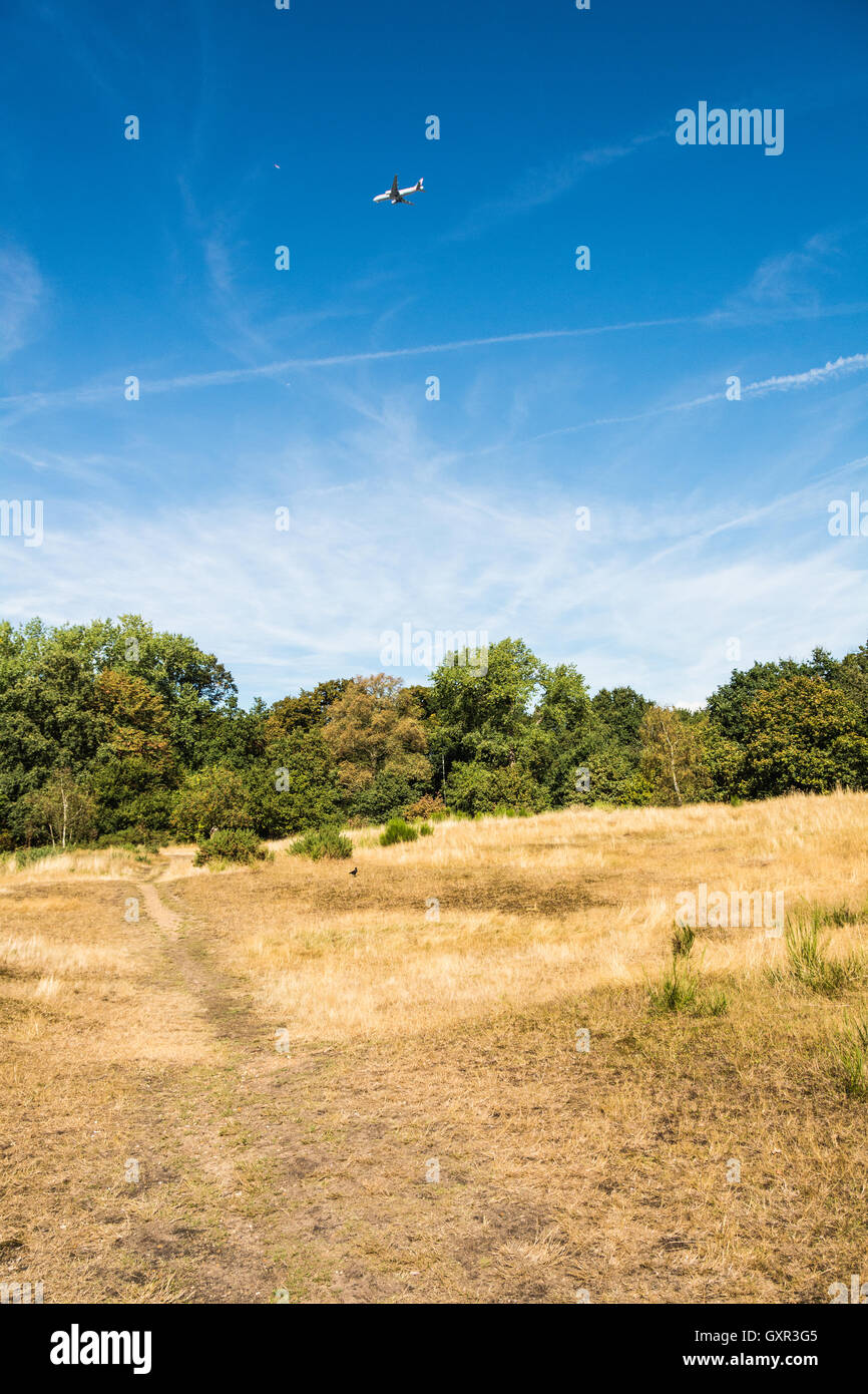The Common in Barnes, South West London, UK Stock Photo ...