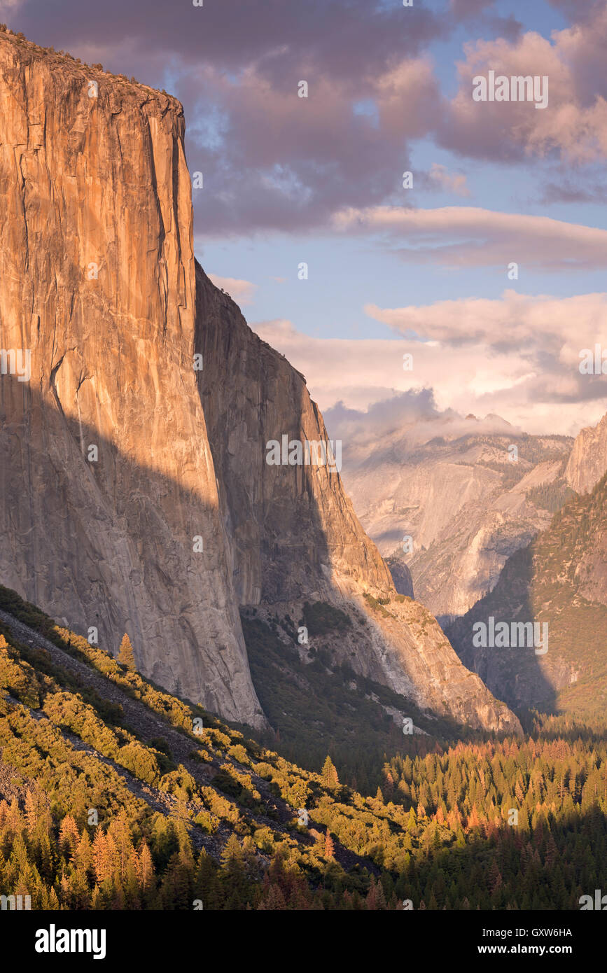 The enormous face of El Capitan towering above Yosemite Valley, California, USA. Autumn (October) 2015. - Stock Image