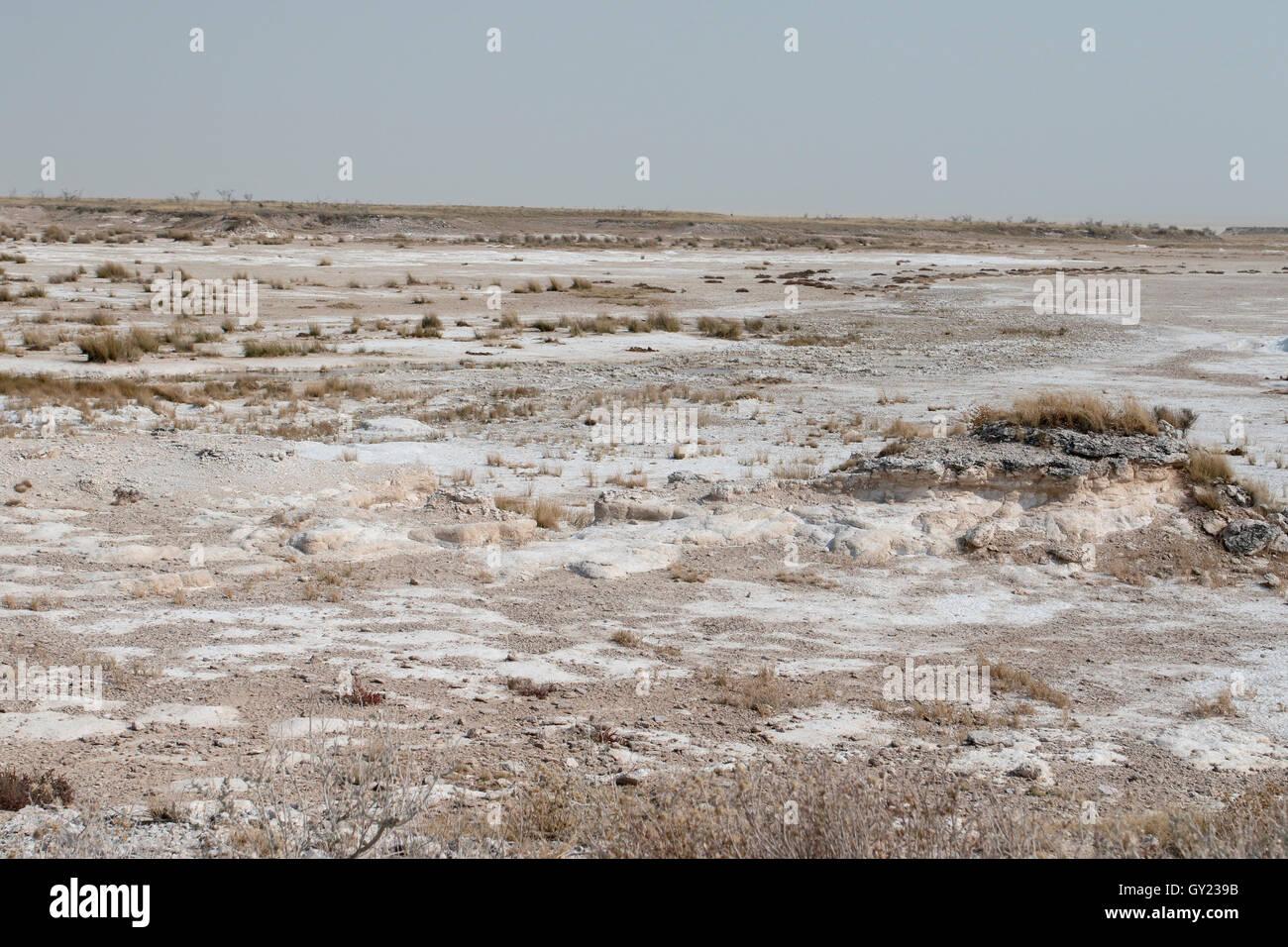 Etosha National Park, Namibia, August 2016 - Stock Image