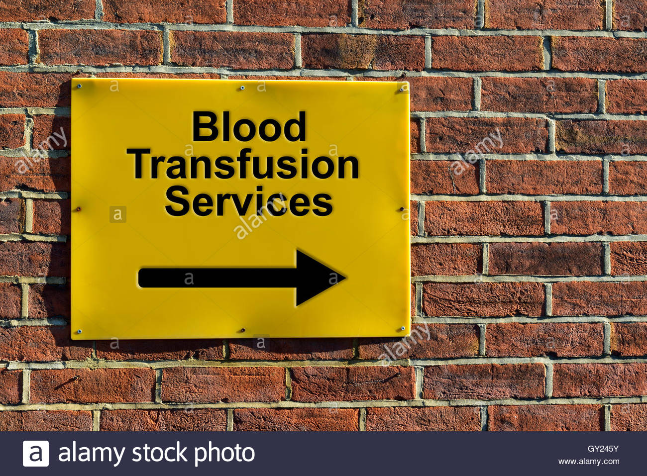 Blood Transfusion Services, NHS wall mounted direction sign. - Stock Image