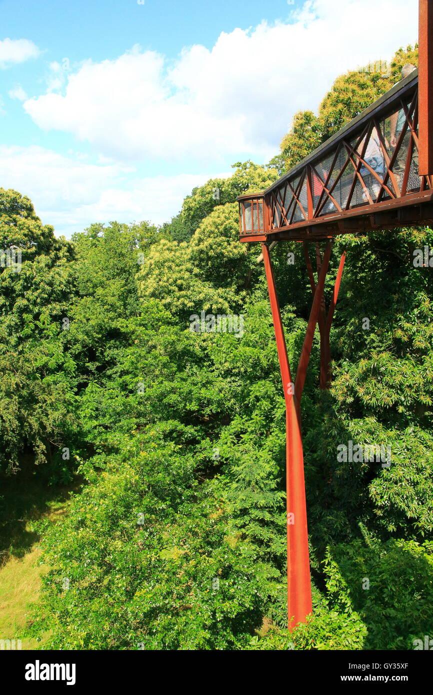 Xstrata Treetop Walkway, Royal Botanic Gardens, Kew, London, England, UK - Stock Image
