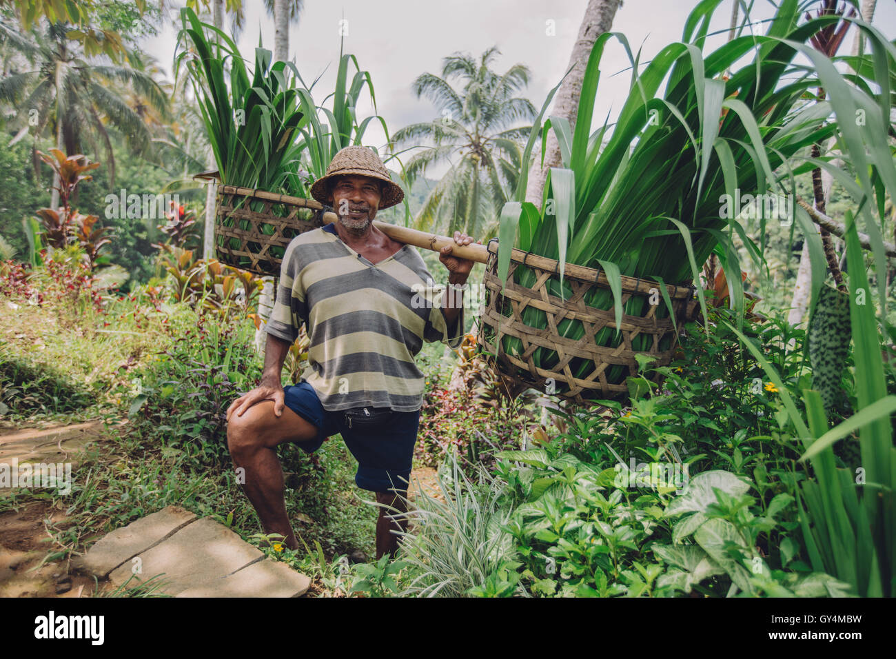Shot of old man with seedlings on his shoulders. Senior farmer smiling working in his farm. - Stock Image