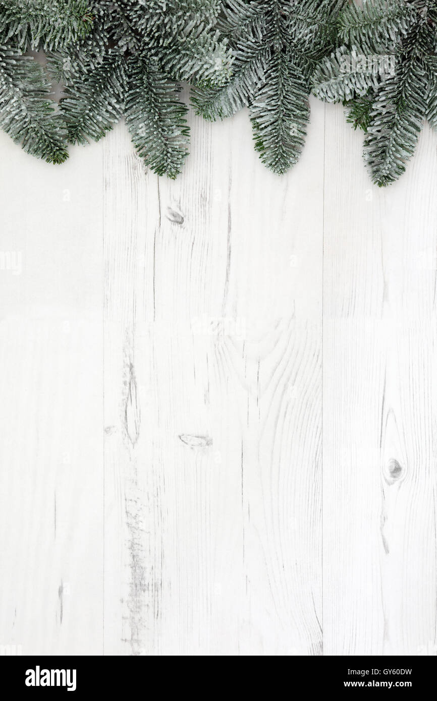 Christmas abstract background border with blue sprue fir and snow over distressed white wood. - Stock Image