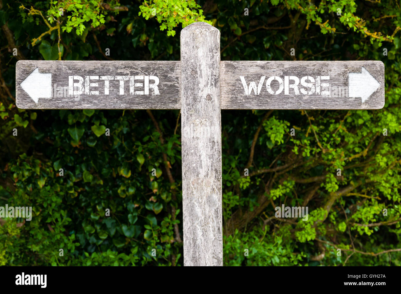 Wooden signpost with two opposite arrows over green leaves background. BETTER versus WORSE directional signs, Choice Stock Photo