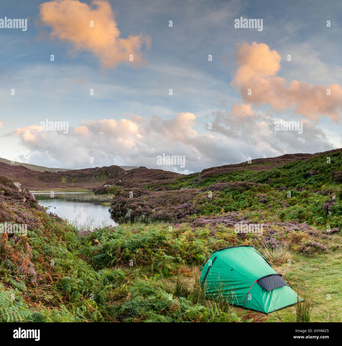 Wild camp with little green tent at Dock Tarn, a lake amongst the fells above Watendlath in the English Lake District - Stock Image