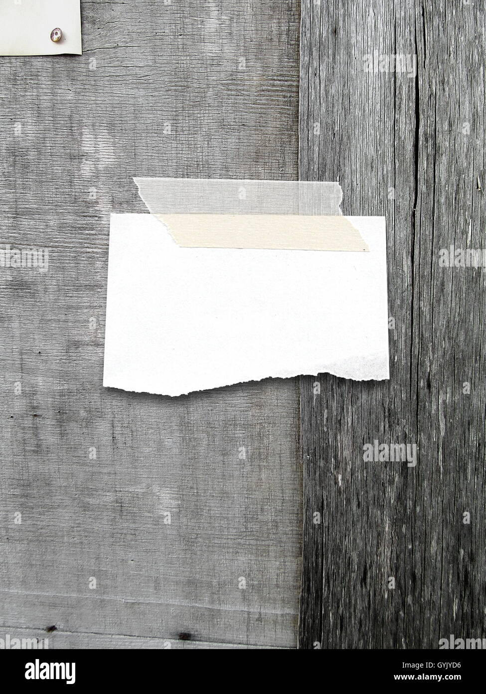 close up of one ripped blank piece of paper frame with adhesive tape