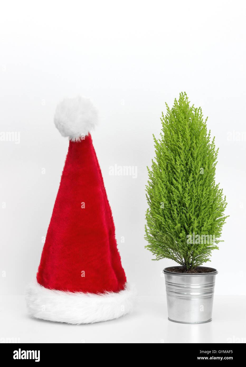 Santa Hat And Little Christmas Tree Stock Photo 120305225 Alamy