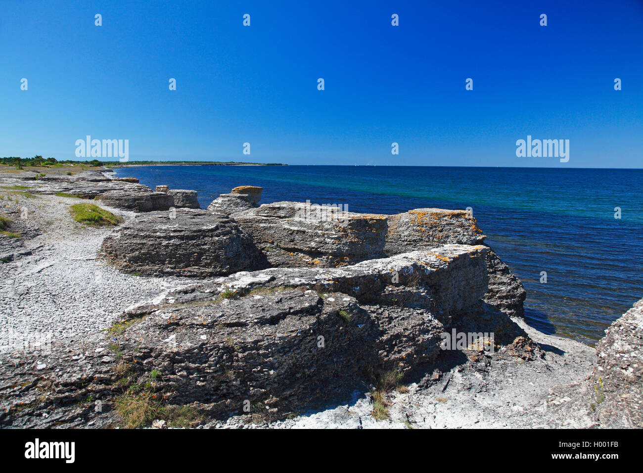 Kalksteinsaeulen an der Kueste bei Byrums Raukar, Schweden, Oeland, Byrums Raukar | chalkstone pillars at the coast - Stock Image