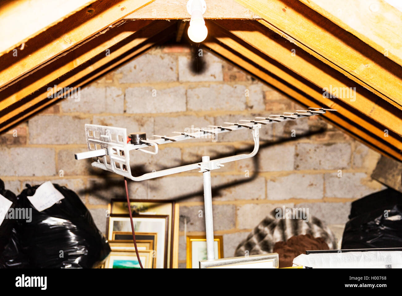 TV Ariel in House loft space attic space analogue ariel wooden beams supporting roof UK England GB - Stock Image