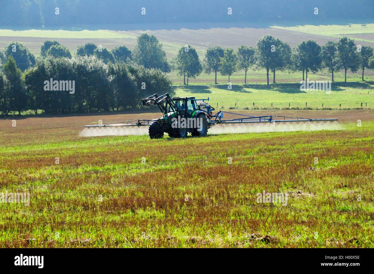 Traktor spritzt Glyphosat zur Unkrautvernichtung im Sommer, Deutschland, Rheinland-Pfalz, Westerwald | tractor spraying - Stock Image