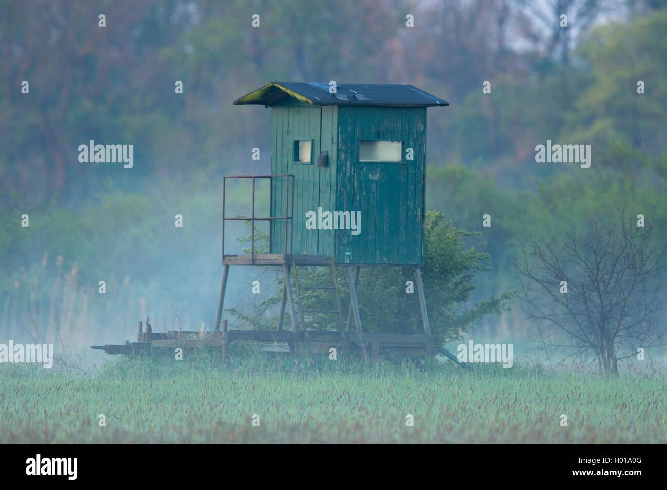 Jagdkanzel im Morgendunst, Deutschland, Nordrhein-Westfalen | raised hide in morning mist, Germany, North Rhine Stock Photo