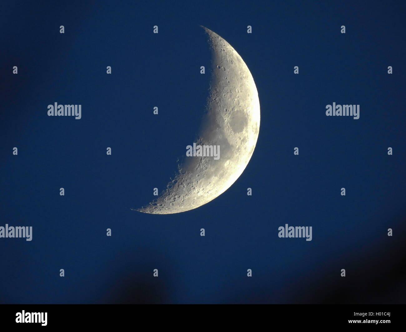 zunehmender Mond, Deutschland, Hamburg   waxing gibbous moon, Germany, Hamburg   BLWS432871.jpg [ (c) blickwinkel/H. - Stock Image