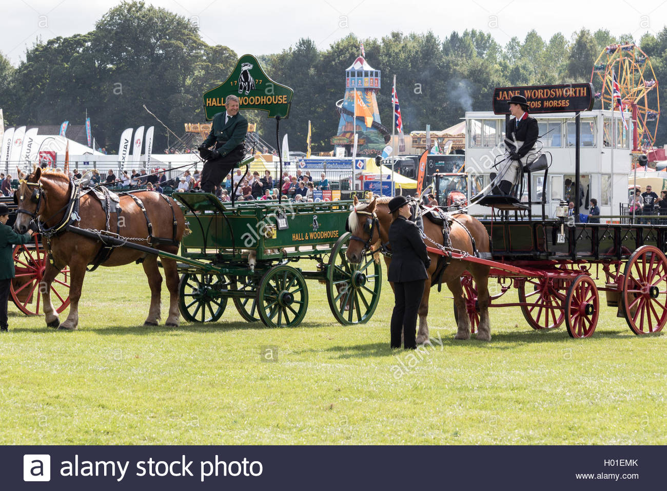 Two heavy (draught) horses and trade wagons exhibiting at the Royal Berkshire County Show - Stock Image