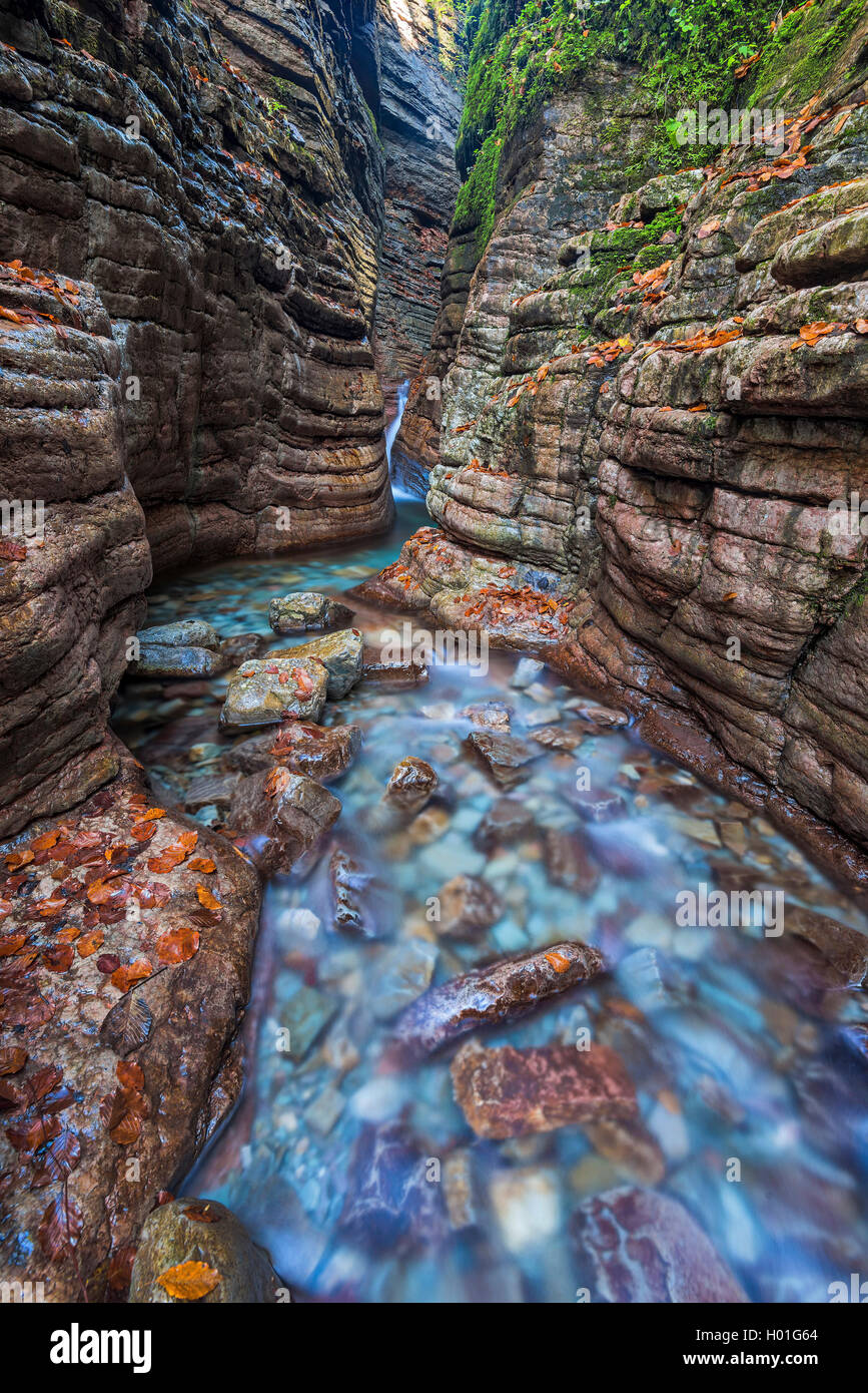 Tauglbachs river flowing through the gorge Taugl, Austria Stock Photo
