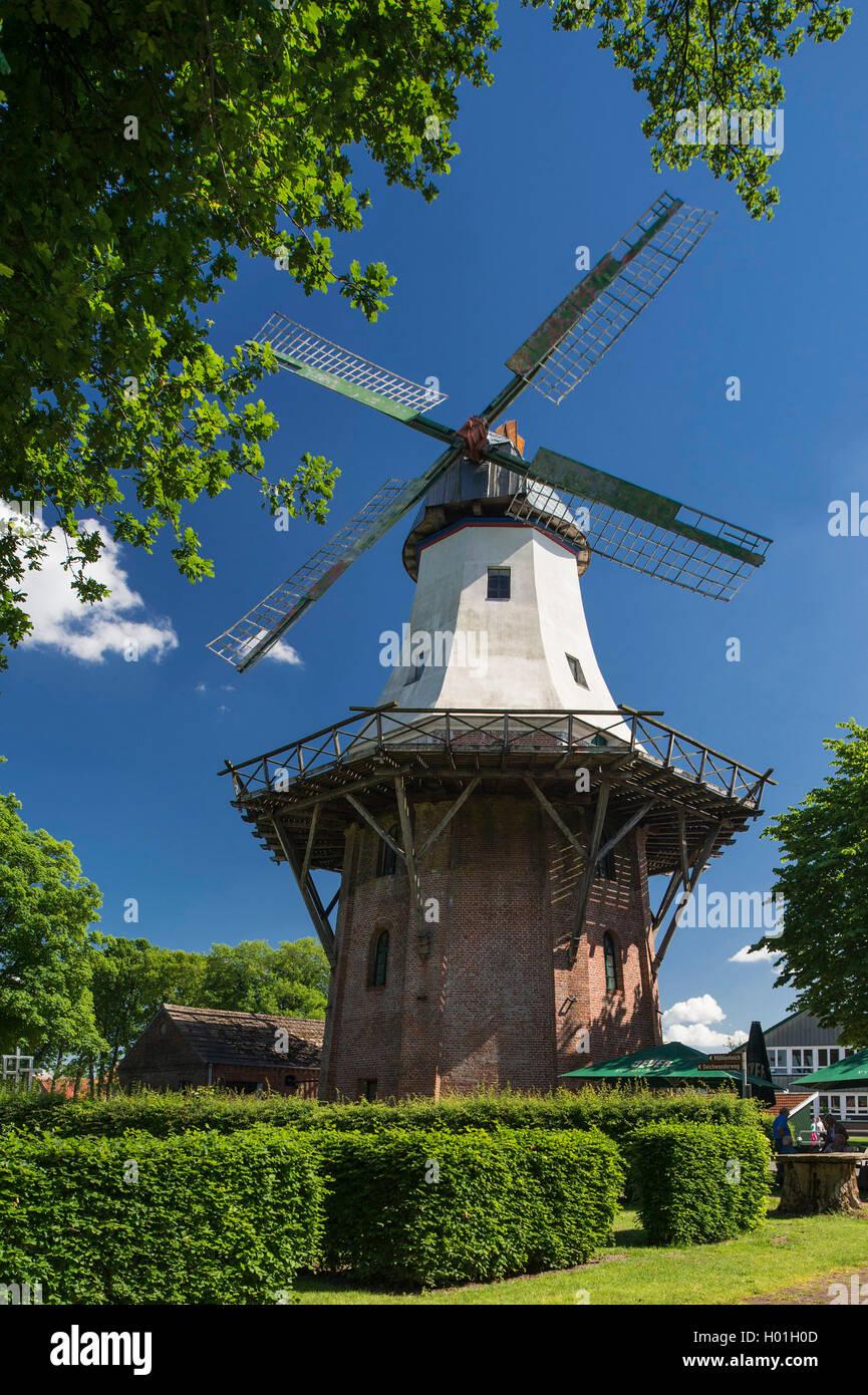 Windmuehle in Barssel an der Soeste, Deutschland, Niedersachsen, Oldenburger Muensterland, Barssel   windmill in - Stock Image