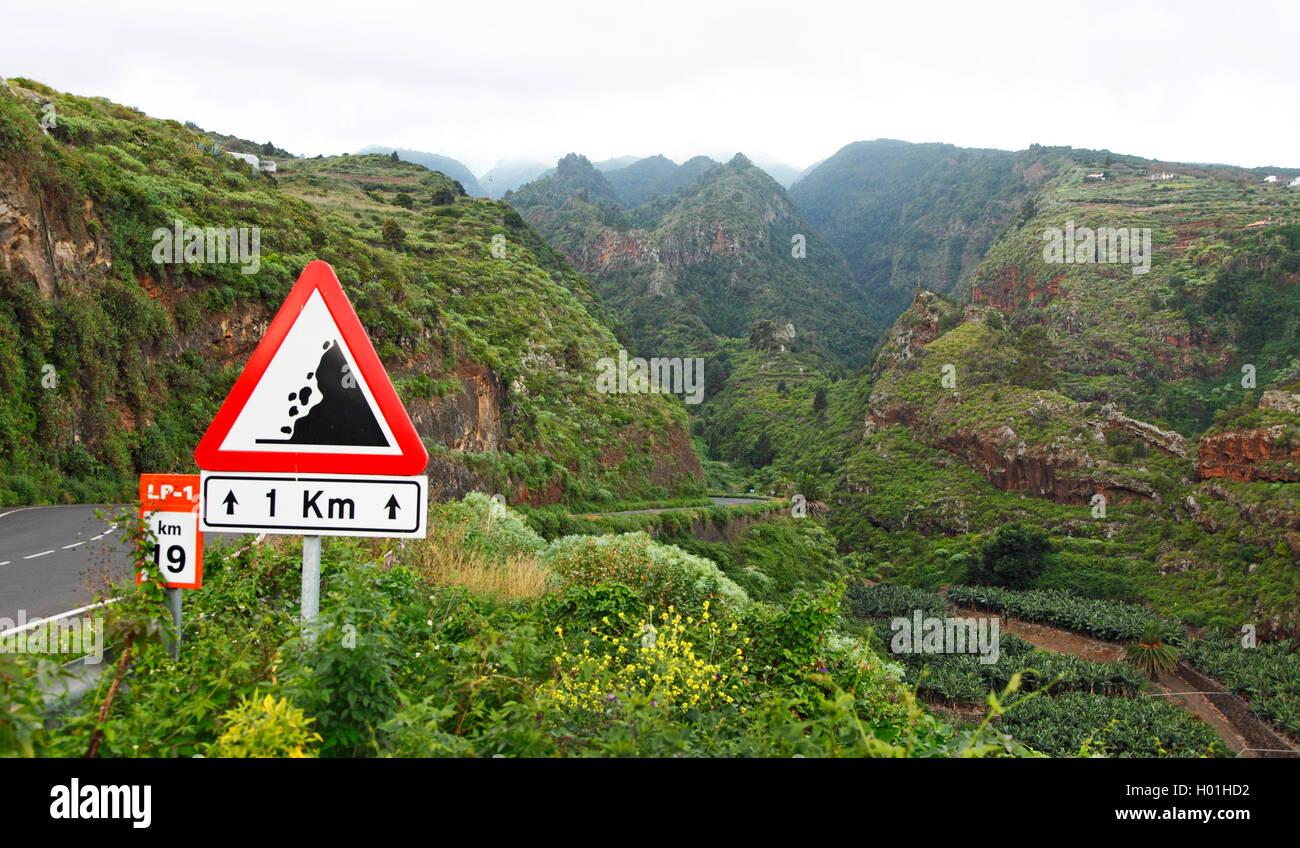 street through the laurel forest in the mountains near La Galga, Canary Islands, La Palma Stock Photo