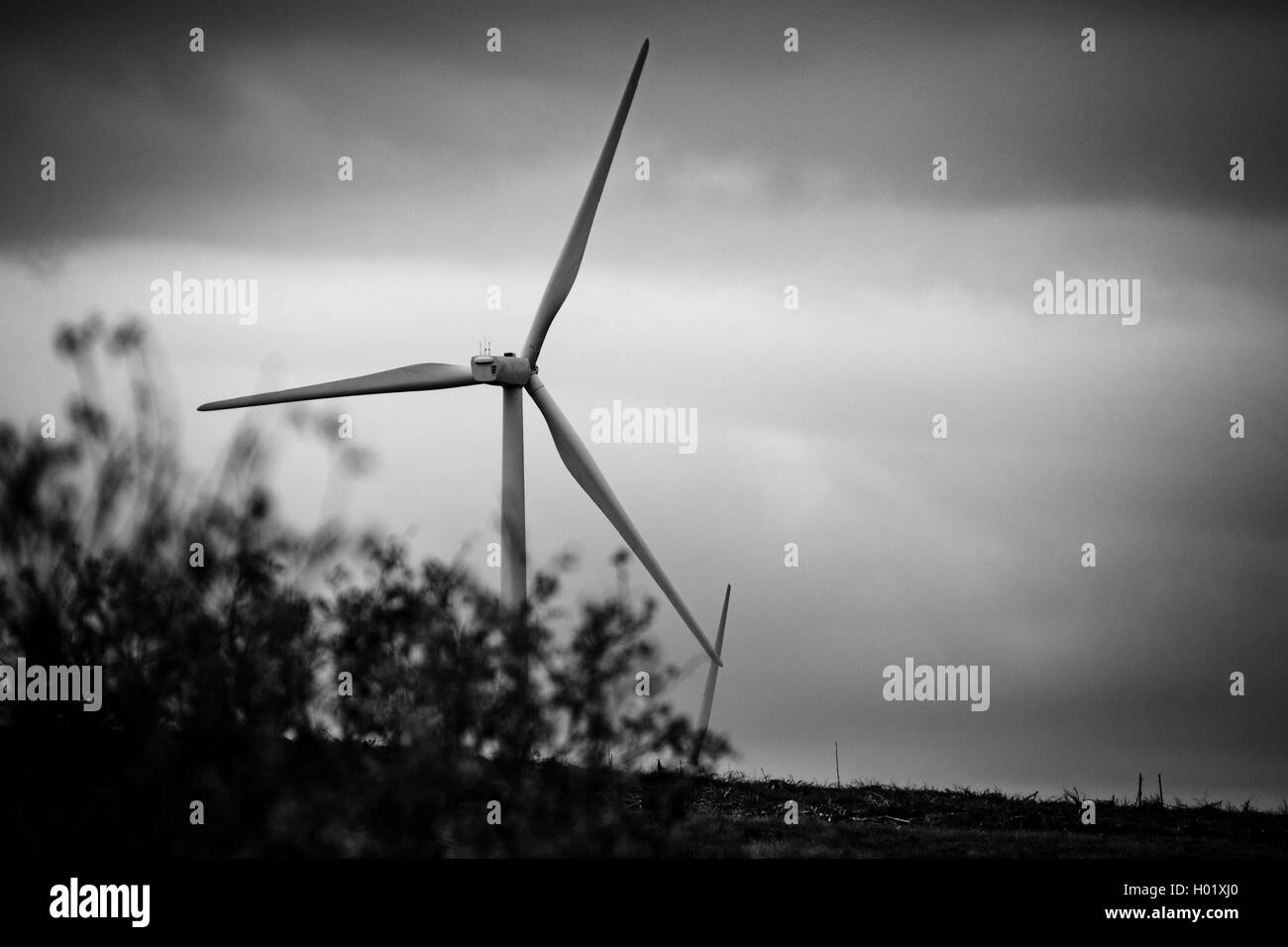 Wind turbine on the Black Law Wind Farm, South Lanarkshire, Scotland - Stock Image