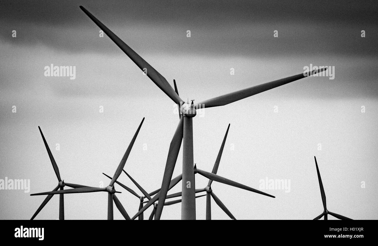 Wind turbines on the Black Law Wind Farm, South Lanarkshire, Scotland - Stock Image