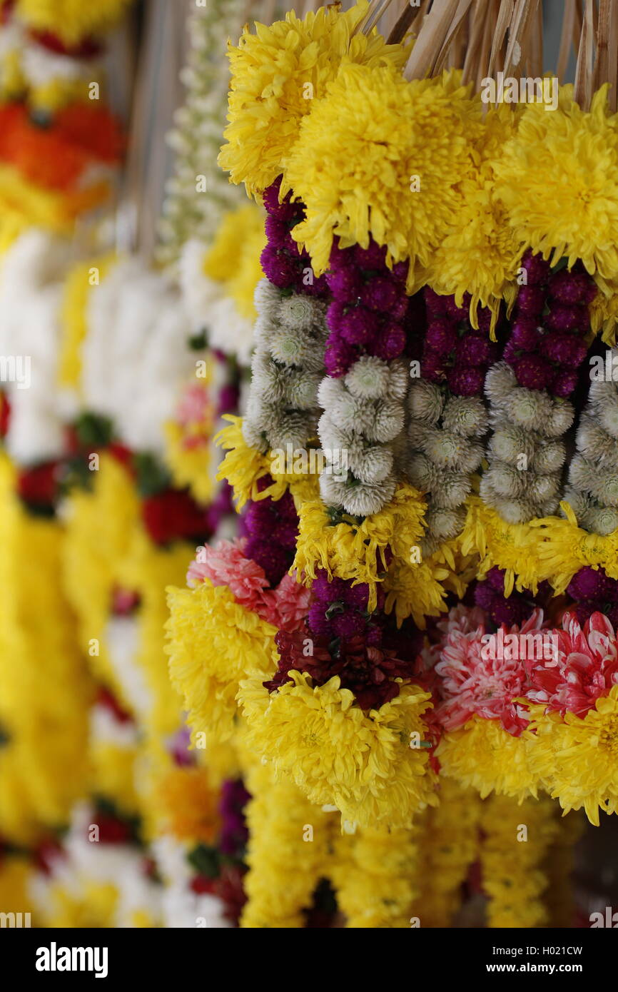 Indian flower garlands - Stock Image