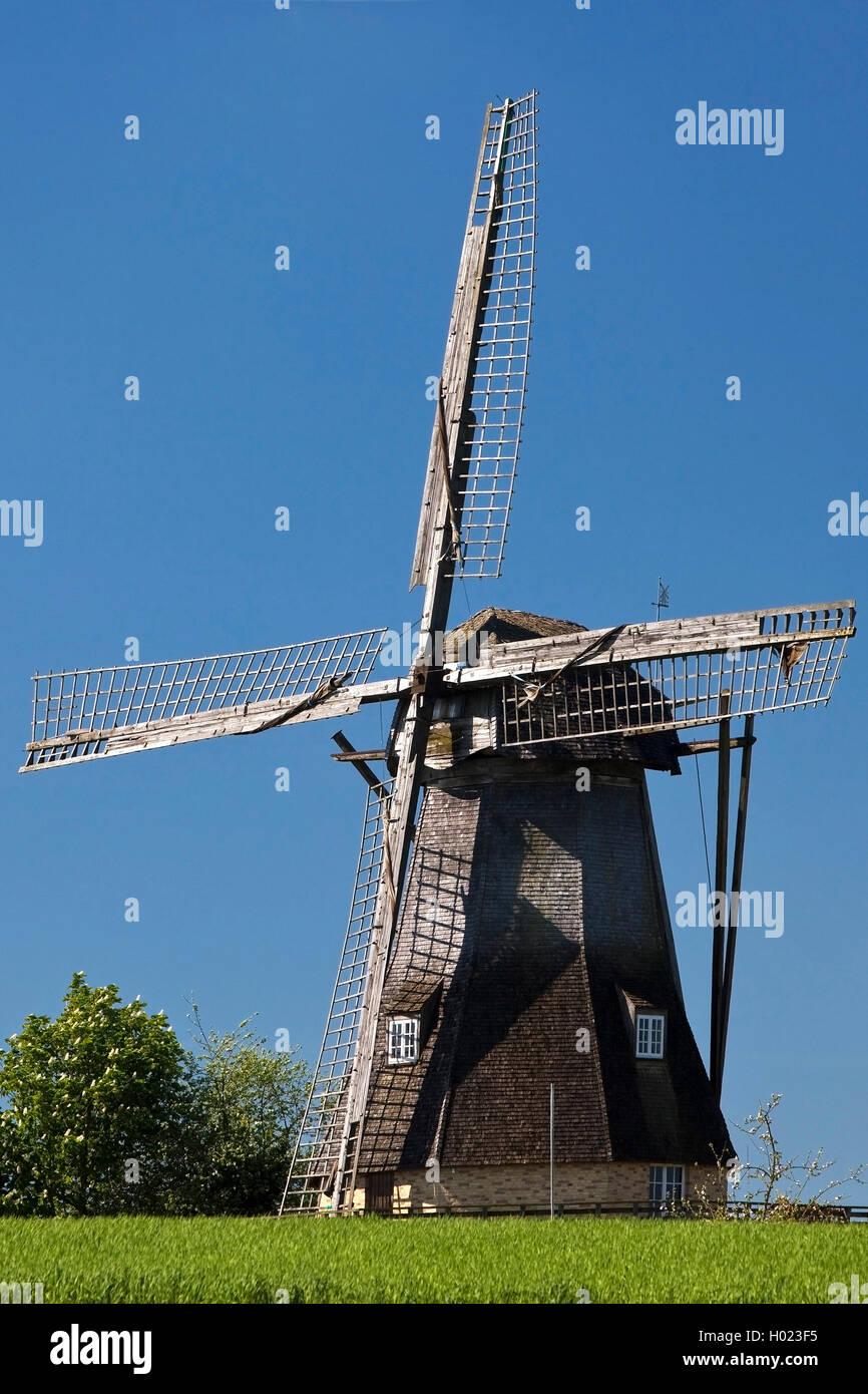 Windmuehle Hollich, Deutschland, Nordrhein-Westfalen, Muensterland, Steinfurt   windmill Hollich, Germany, North - Stock Image