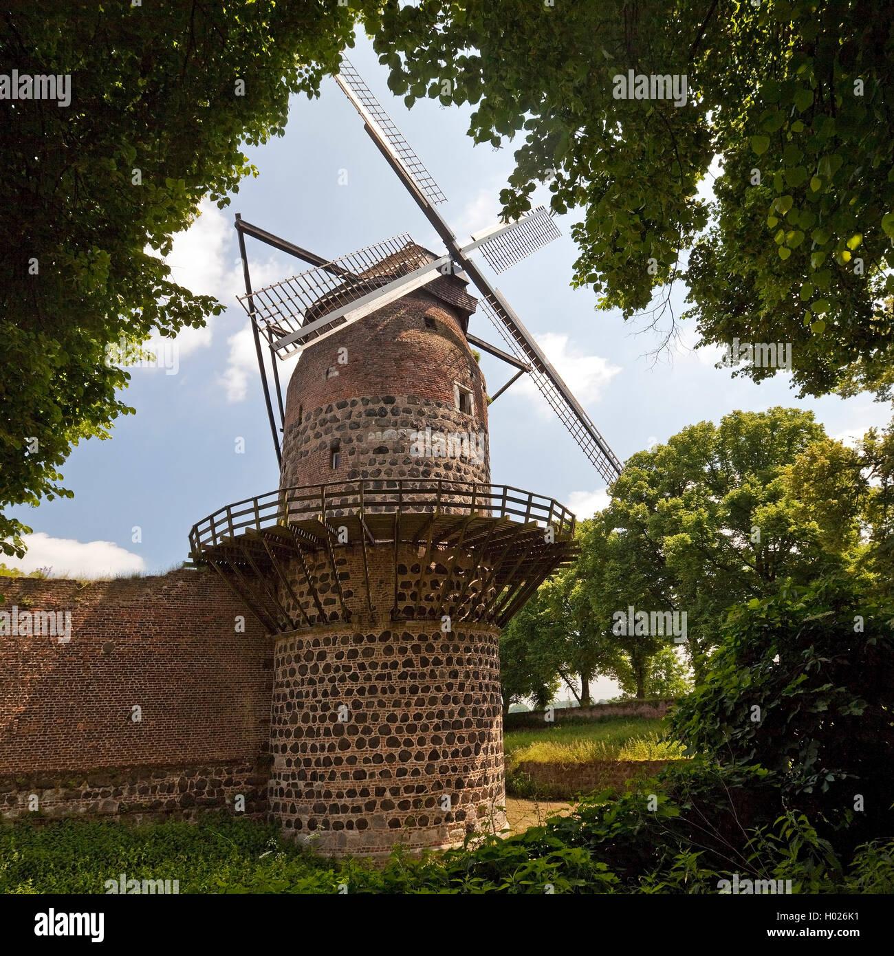Zonser Windmuehle, Hollaenderwindmuehle, Deutschland, Nordrhein-Westfalen, Niederrhein, Dormagen   windmill of Zons, - Stock Image