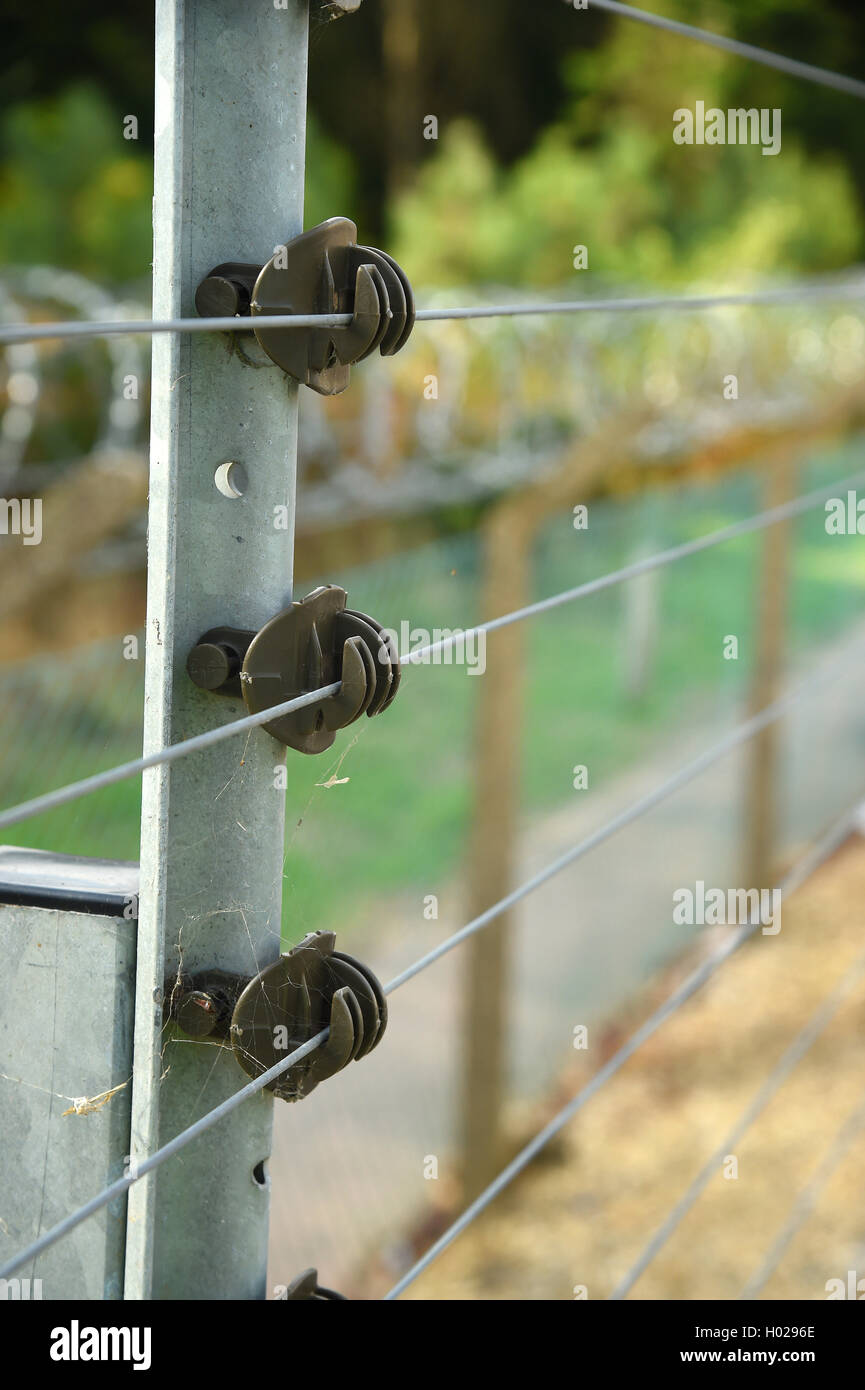 Electrified security fence Good depth selective focus image. - Stock Image