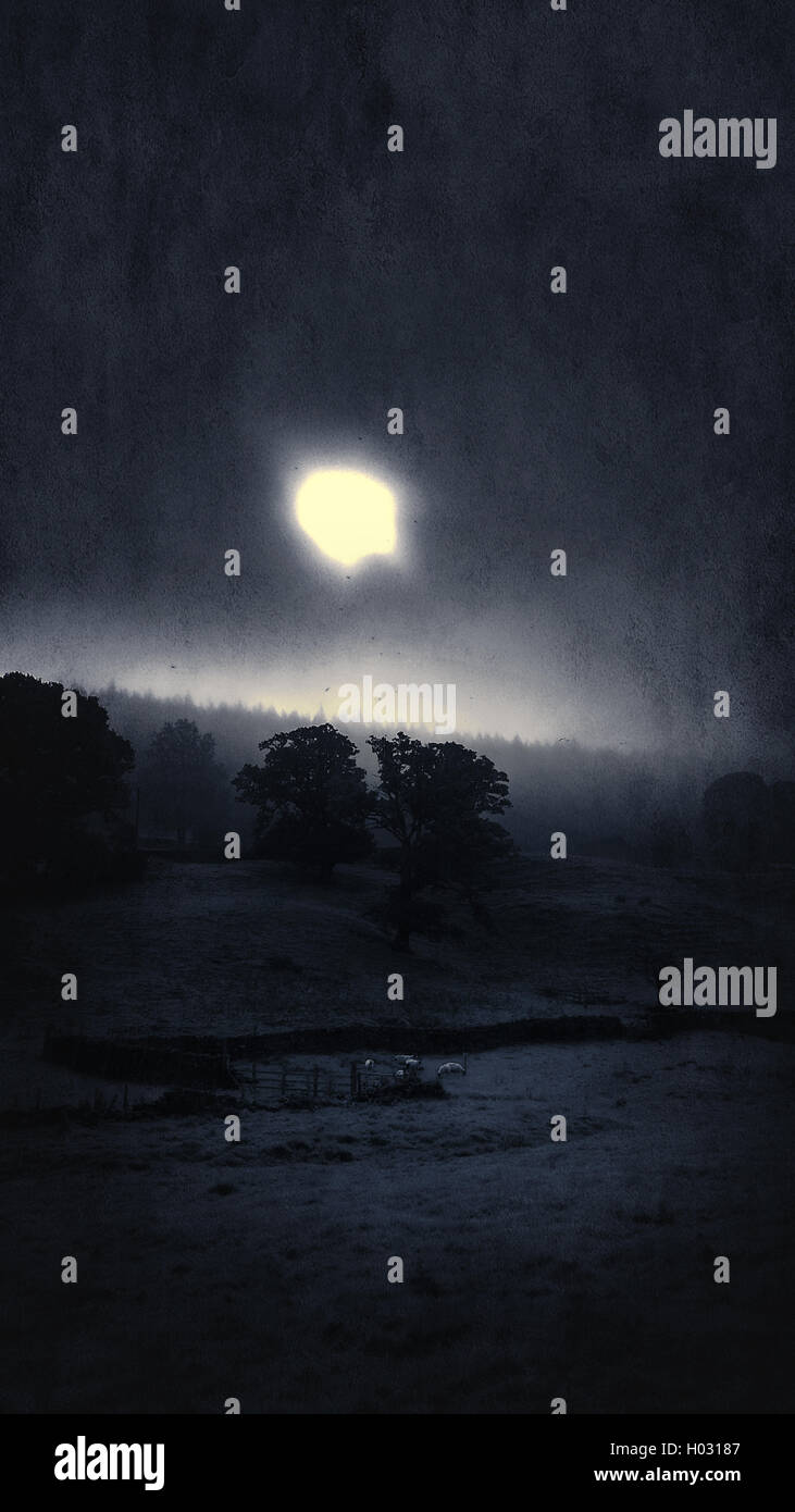 moody night  Yorkshire landscape  with full moon - Stock Image