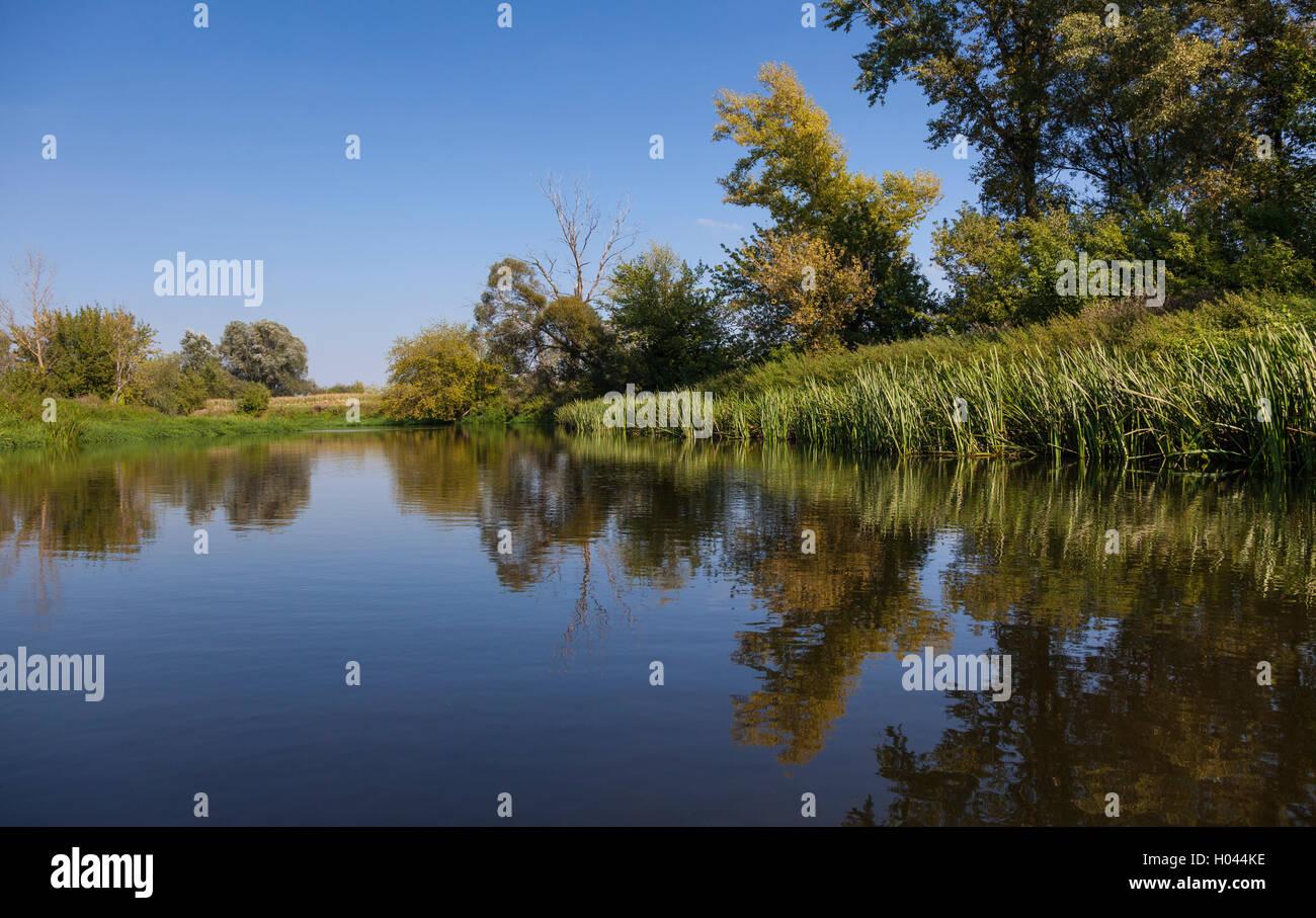 Bzura River, summer, Mazovia, Poland. - Stock Image