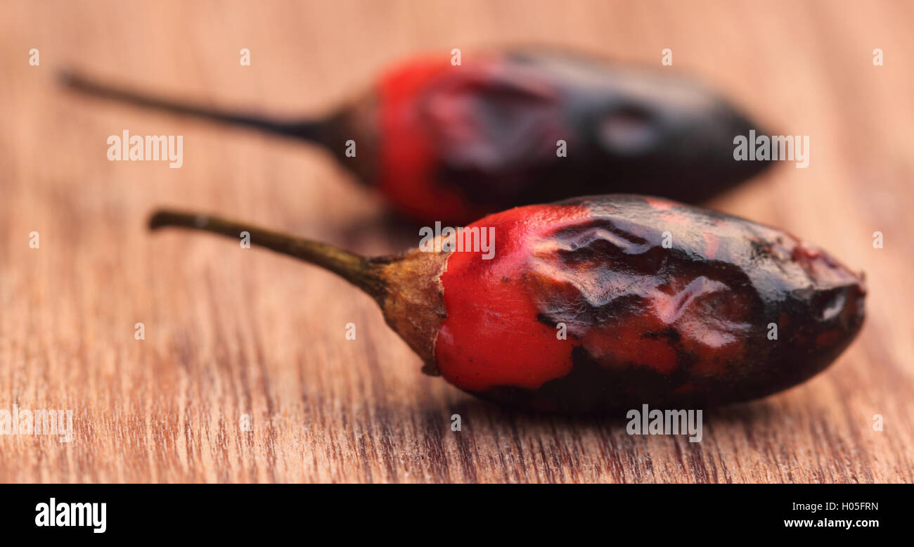 Red hot chili - Stock Image