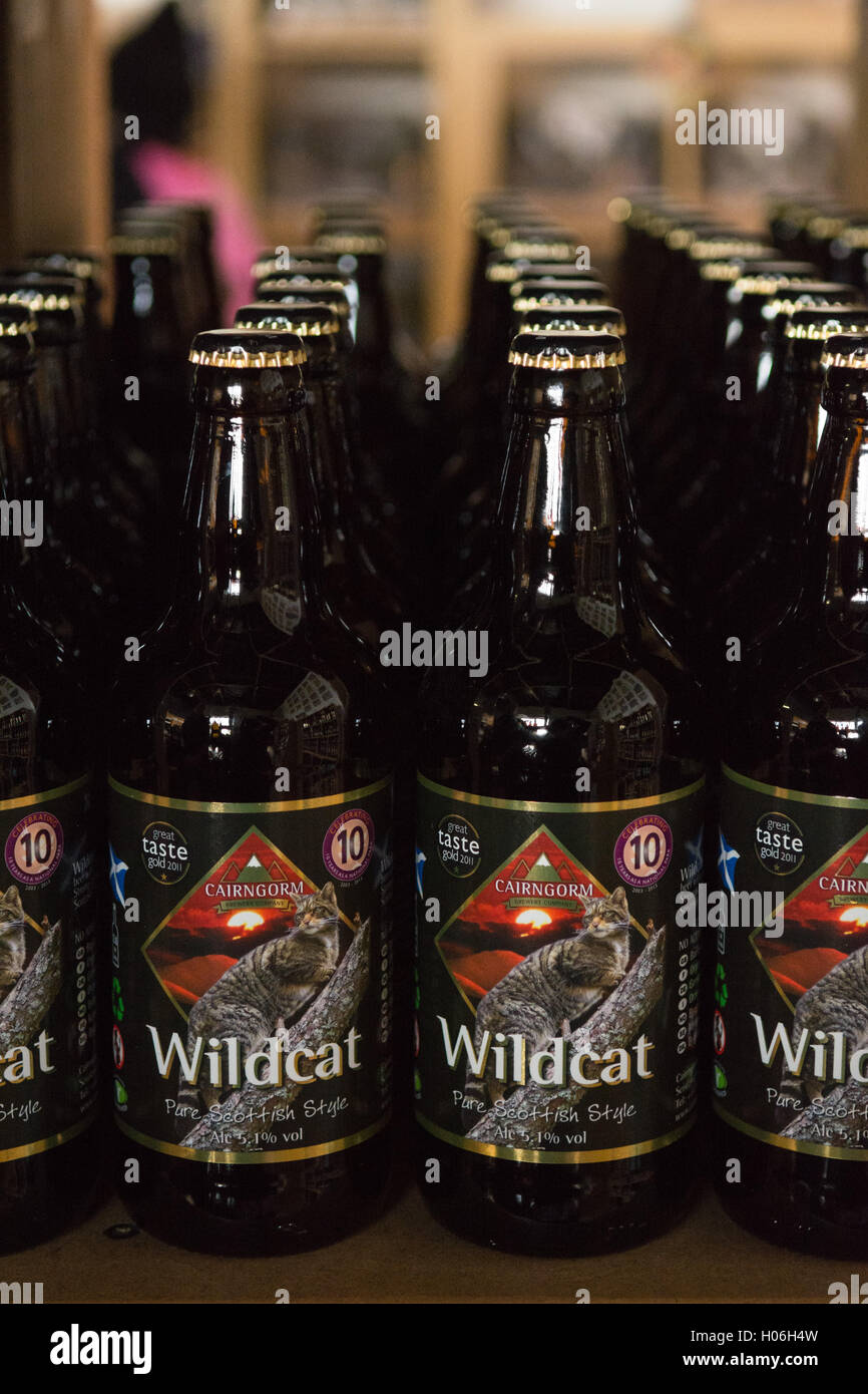 Wildcat - Cairngorm Brewery, a Scottish craft brewery - on sale in the visitor shop at the brewery in Aviemore - Stock Image