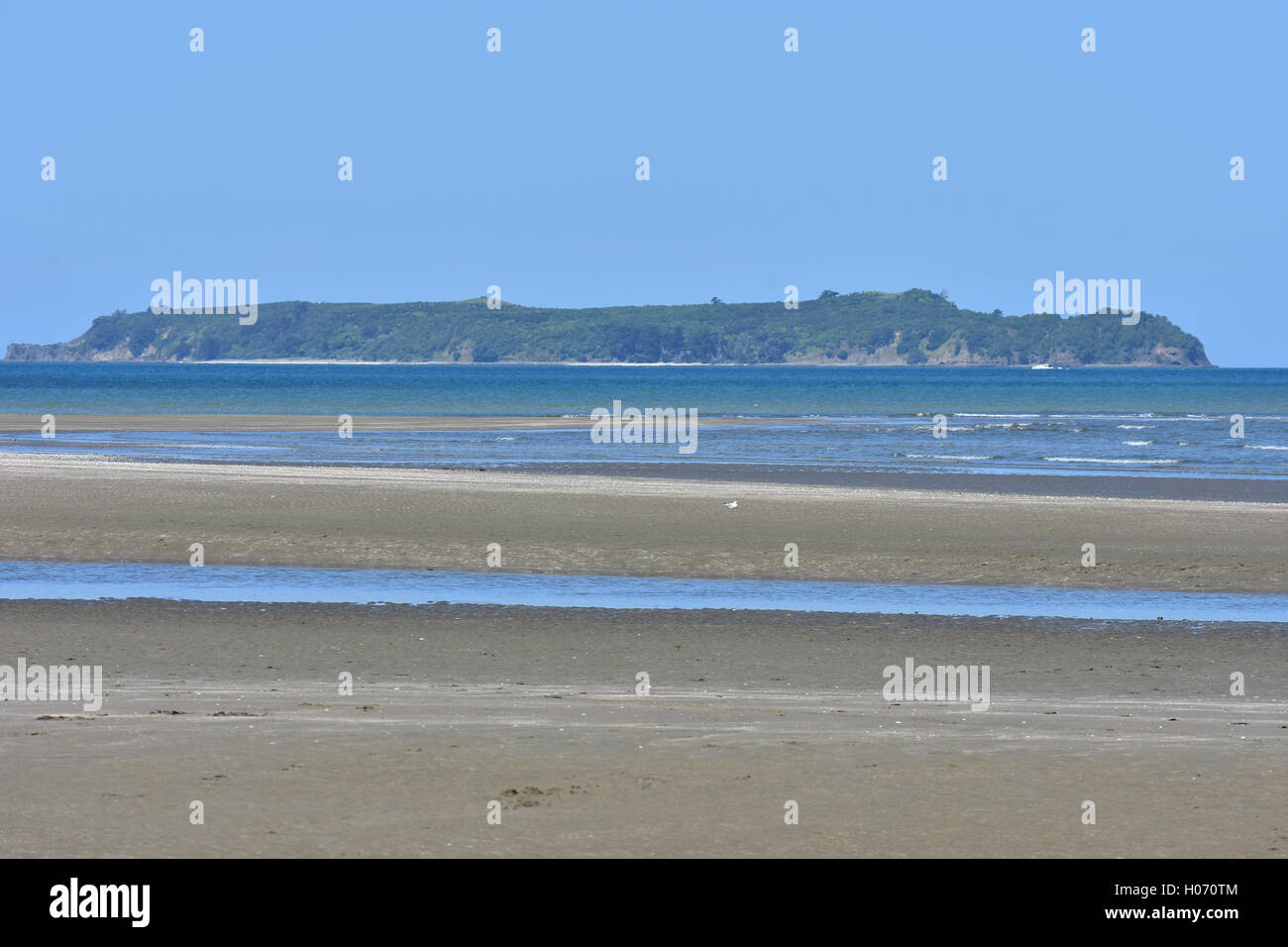 Flat island with some forest coverage from sandy beach at low tide - Stock Image