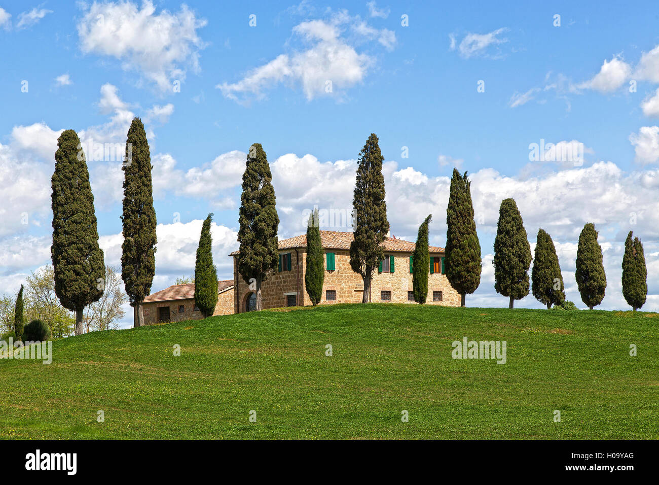 Country estate and cypress trees, near Pienza, Tuscany, Italy - Stock Image