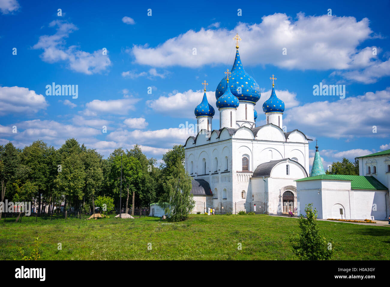 Cathedral of the Nativitys in Suzdal, Golden Ring, Russia - Stock Image