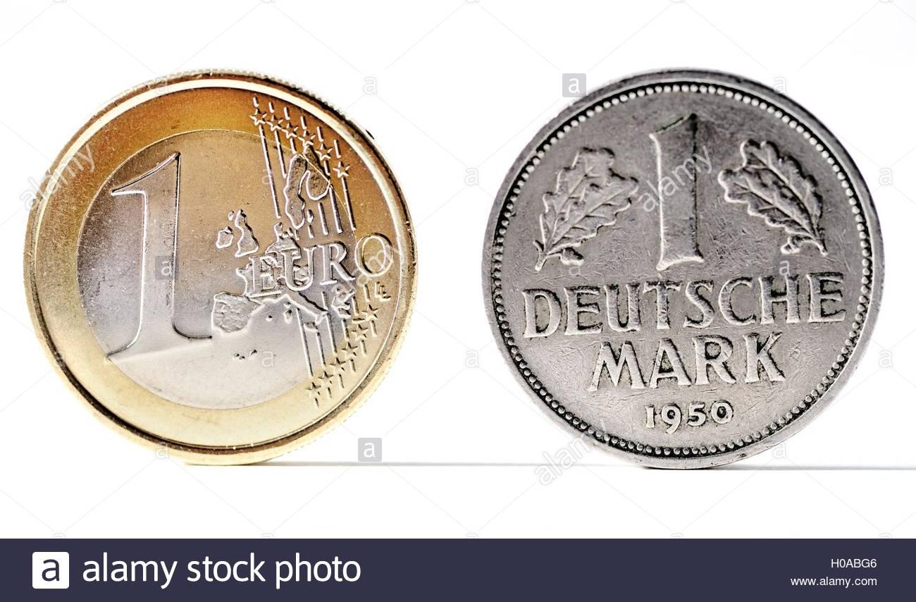BLWX070371 [ (c) blickwinkel/McPHOTOx/Christian Ohde Tel. +49 (0)2302-2793220, E-mail: info@blickwinkel.de, Internet: - Stock Image