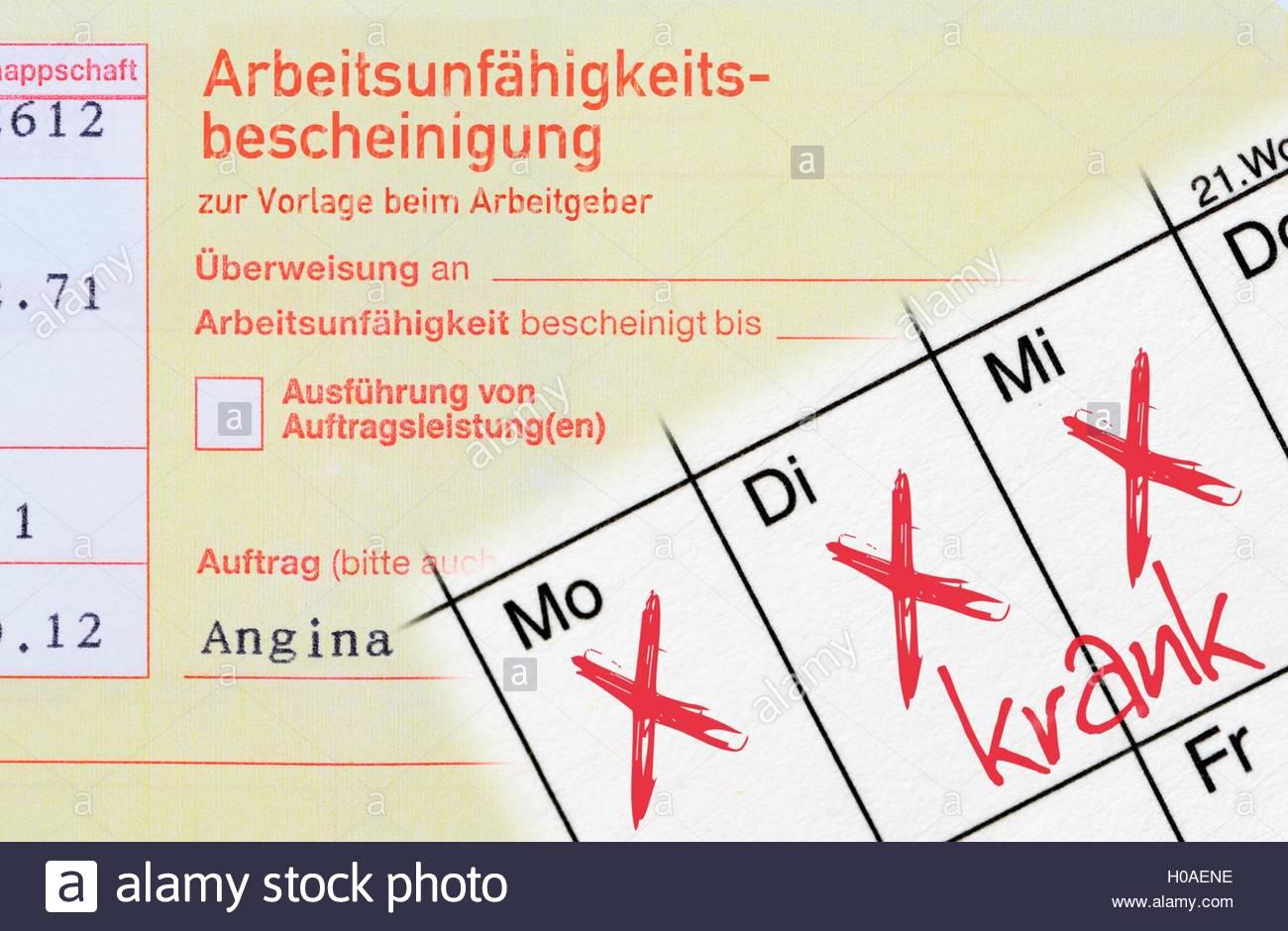 BLWX072124 [ (c) blickwinkel/McPHOTOx/Christian Ohde Tel. +49 (0)2302-2793220, E-mail: info@blickwinkel.de, Internet: Stock Photo