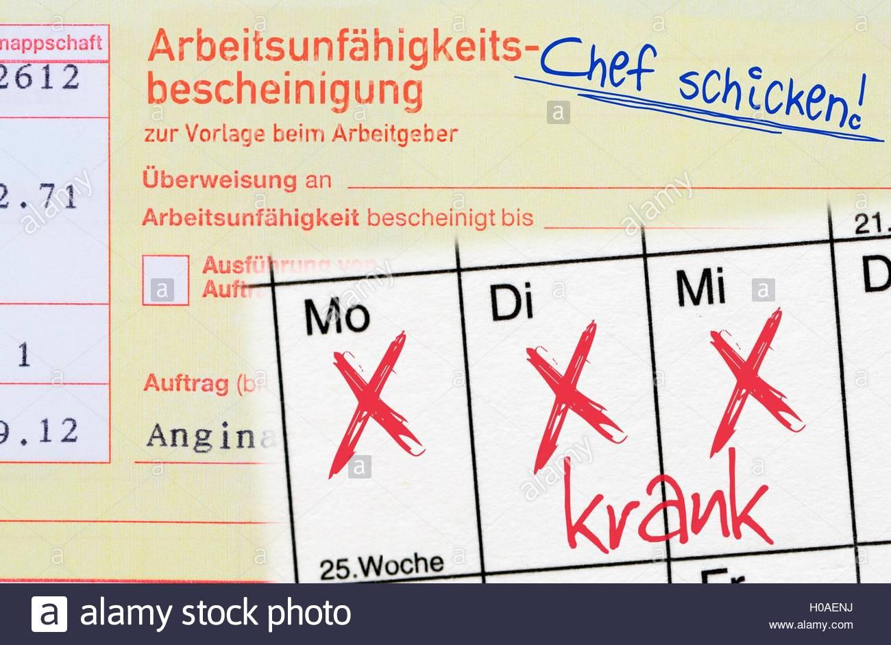 BLWX072126 [ (c) blickwinkel/McPHOTOx/Christian Ohde Tel. +49 (0)2302-2793220, E-mail: info@blickwinkel.de, Internet: Stock Photo