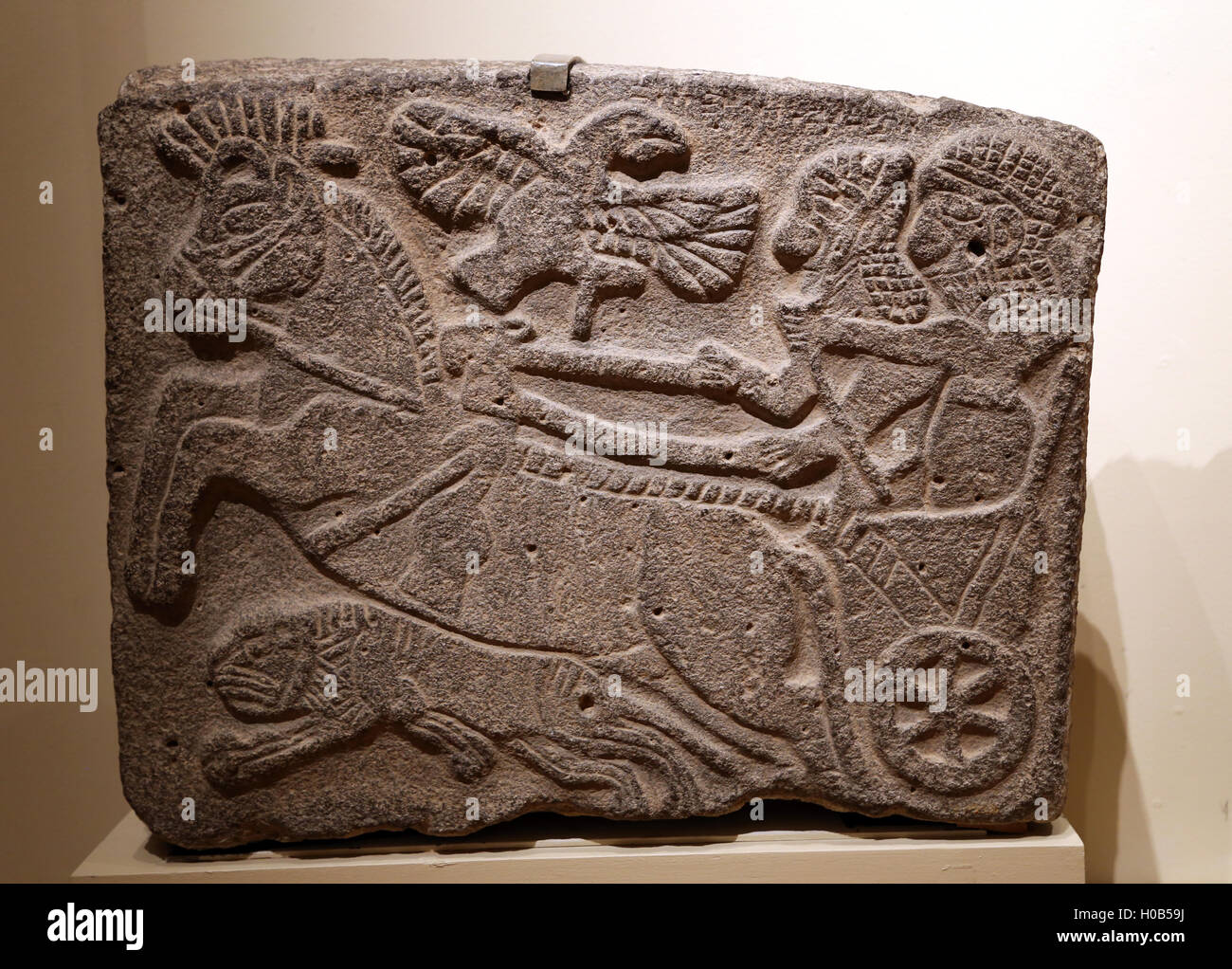 North Syrian. Orthostats relief. Lion-hunt scene. Basalt. Tell Halaf. Wall of Temple Palace. Neo-Hittite period. - Stock Image