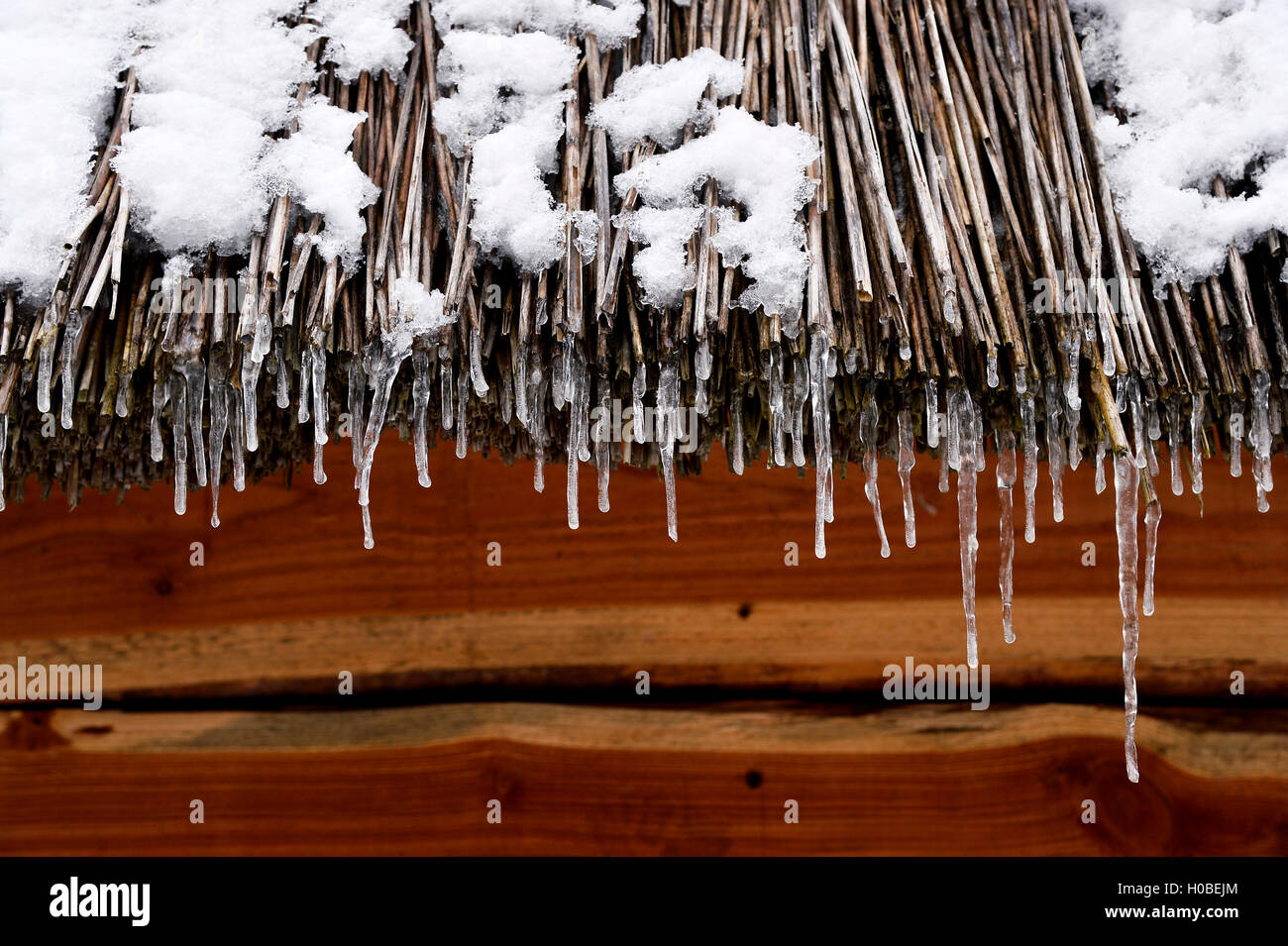 Straw roof on a chalet in winter, ardèche, france - Stock Image