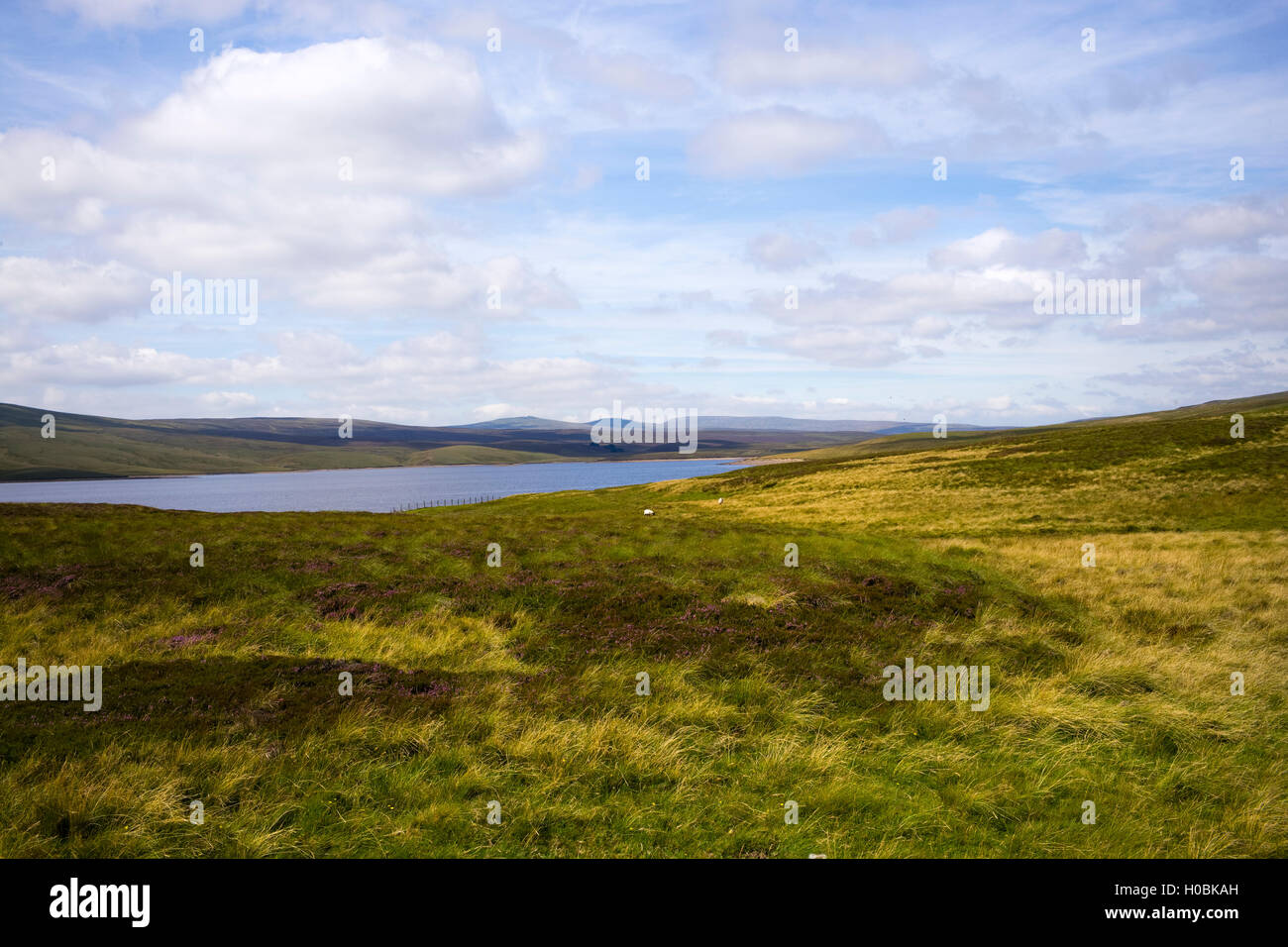 Cow Green Reservoir, Upper Teesdale National Nature Reserve, Durham, England, UK - Stock Image