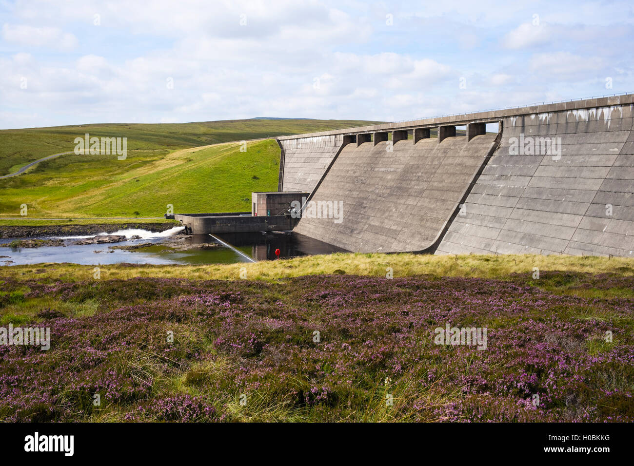 Cow Green Dam, Upper Teesdale National Nature Reserve, Durham, England, UK - Stock Image