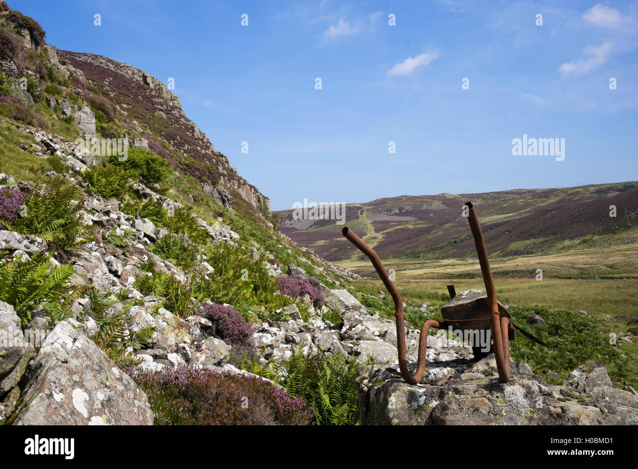 A reminder of individual industry, Falcon Clints, Upper Teesdale National Nature Reserve, Durham, England, UK - Stock Image