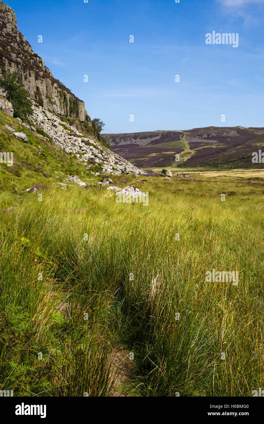 The Pennine Way below Falcon Clints, Upper Teesdale National Nature Reserve, Durham, England, UK - Stock Image