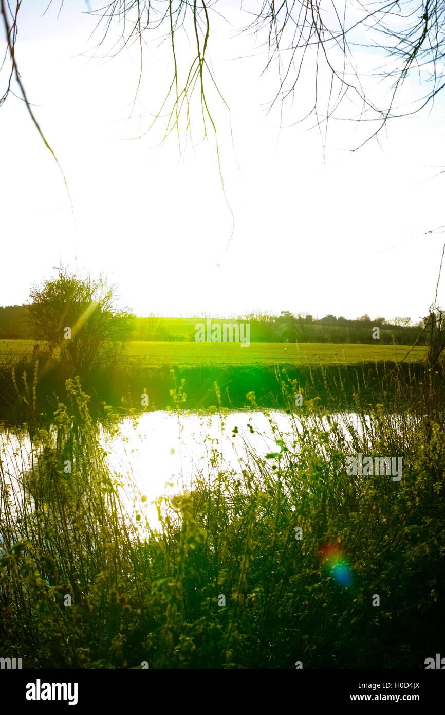 river avon stratford upon avon warwickshire midlands english england uk - Stock Image