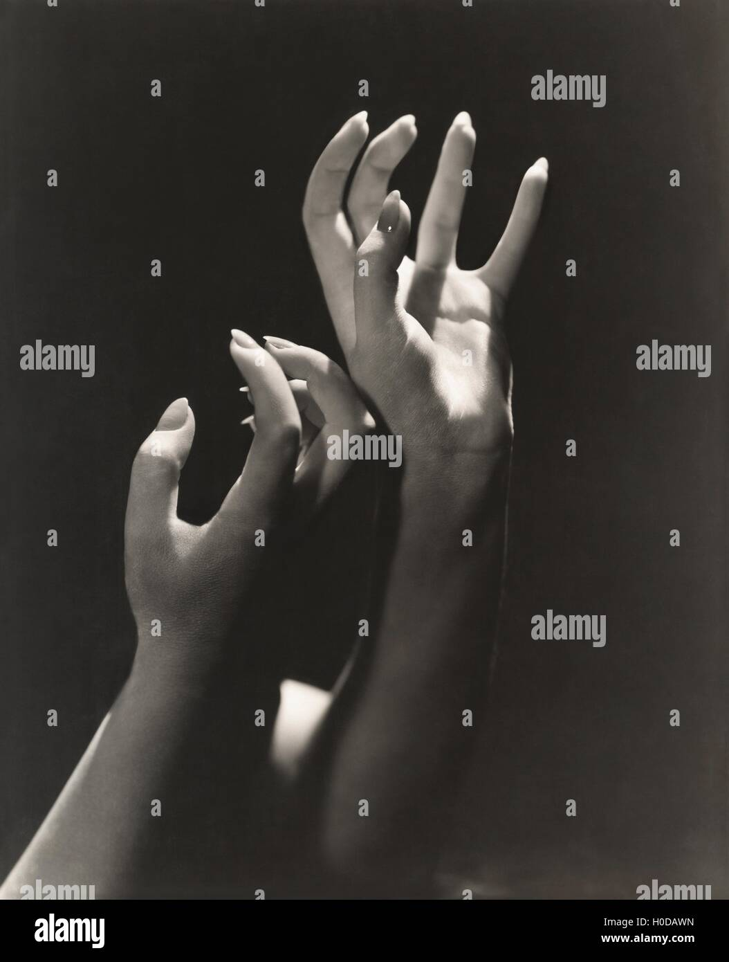 Reaching for the stars - Stock Image