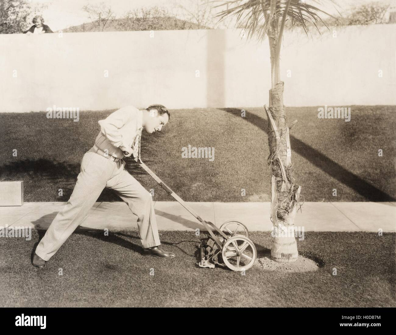 Man attacking palm tree with lawn mower - Stock Image